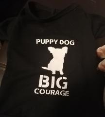 Majica za psa puppy