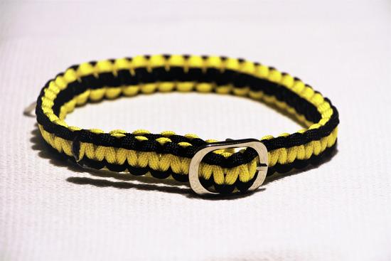 Ogrlica za psa