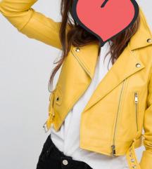 Biker jacket Bershka