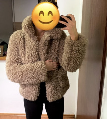 Zara teddy kaputic