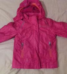 Roza jaknica 98