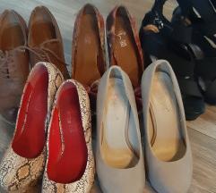 Cipele lot