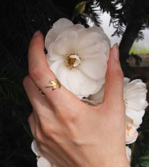 Mjedeni prsten ARDEN
