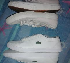 Lot lacoste i superga