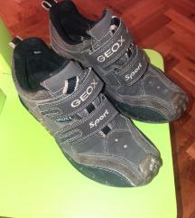 Geox cipele tene