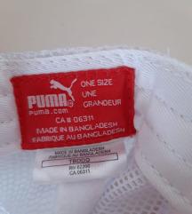Puma šilerica