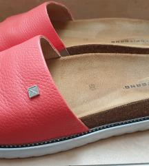 Kopitarna papuče 43
