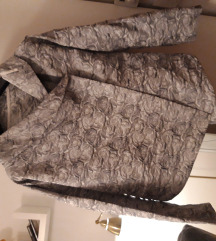 Posebna srebrna jaknica