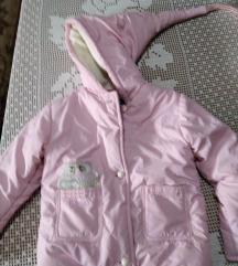 Roza princes jaknica 80