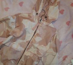 Roza jaknica bsh