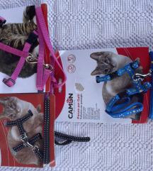Ogrlice,lajne,orme,četke za pse i mačke