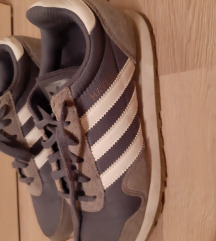 Haven Adidas