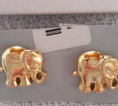 Nove Zepter naušnice sloniči