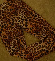 H&M tigraste