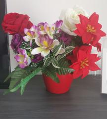 Prodajem svakojako cvijece