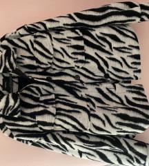 Zebrasta natkošulja