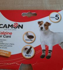 Cizmice carapice za pse