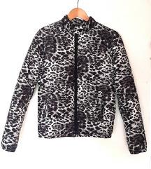 Zimska leopard jaknica