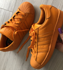Adidas superstar🧡