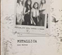 Metallica Istina o bendu knjiga