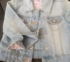 Palomino traper jaknica br. 98