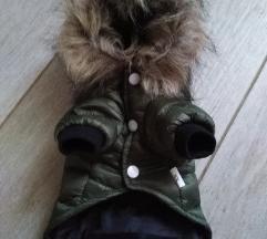 Jaknica za male pse + gratis čarapice