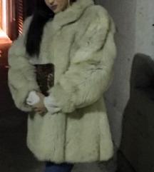 Polarna lisica