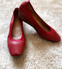 Hispanitas cipele/uključena poštarina