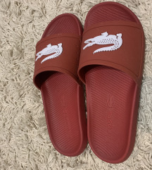 Lacoste papuče