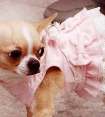Ormica/haljinica za psa