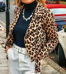 Leopard jakna