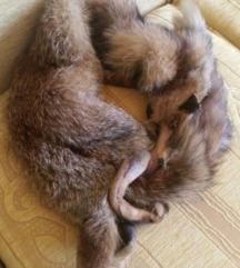 Pravo krzno od lisice i jakna od prave teleće kože