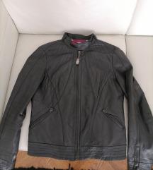 Trussardi kožna jakna, tal. 42