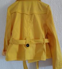 Limun žuta jaknica