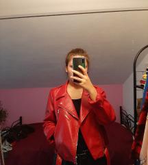 Crvena kožna jakna SNIŽENO!!