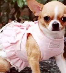 Ormice / haljinice za pse