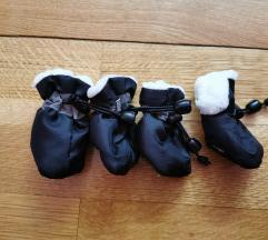 Cipelice za psa