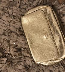 Coccinelle torbica - zlatna