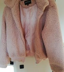 Teddy rozna jakna