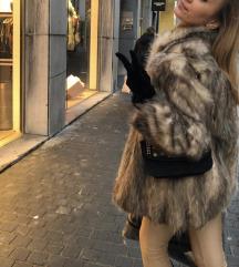 Budna lisica ❗️HITNO 1200 kn