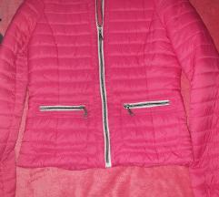 Roza jaknica