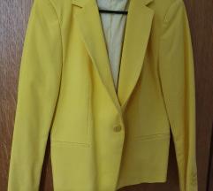 Zara žuti sako