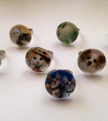 Prstenje sa životinjama, novo
