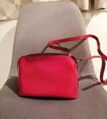 Prekrasna Carpisa torbica
