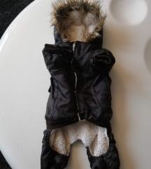 Odijelo za psa