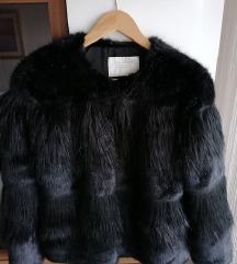 Zara bundica