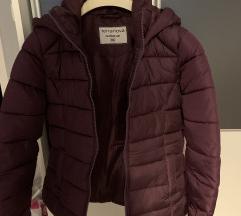 Terranova jakna XS