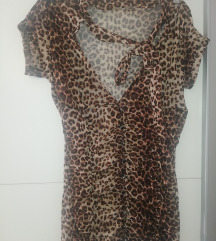 Tigrasta košuljica