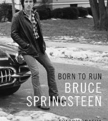 Bruce Springsteen biografija