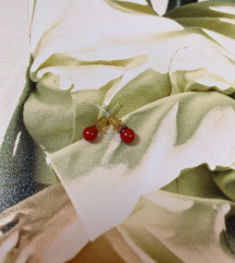 Crvene male naušnice